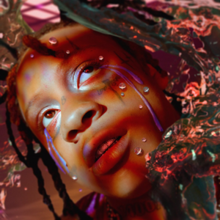 [Image: 220px-Trippie_Redd_-_A_Love_Letter_to_You_4.png]