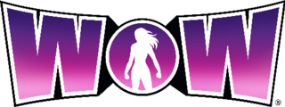 <i>Women of Wrestling</i> television series