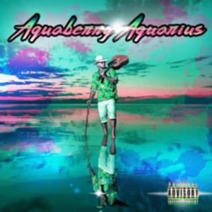 Aquaberry Aquarius - Image: Aquaberry Aquarius album cover