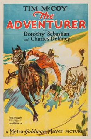 The Adventurer (1928 film) - Theatrical release poster