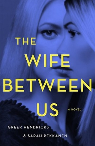 Picture of a book: The Wife Between Us