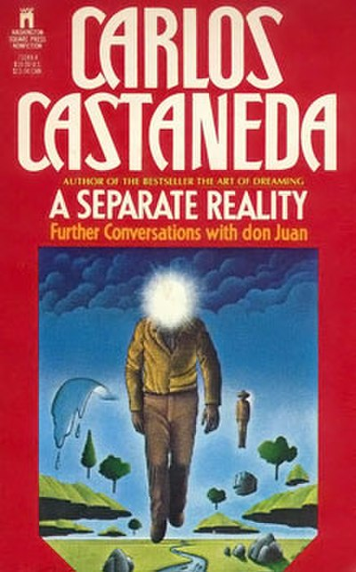 Picture of a book: A Separate Reality