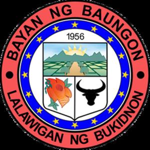 Baungon, Bukidnon - Image: Baungon Bukidnon