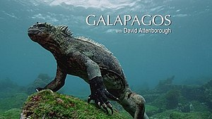 Galapagos 3D - Series title card from Sky1 broadcast