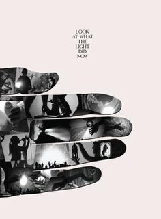 <i>Look at What the Light Did Now</i> 2010 video and Live album by Feist