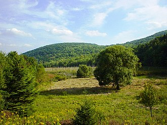 Vestal, New York - Nature preserve at Binghamton University
