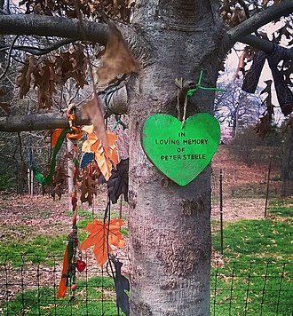 Peter Steele - An oak tree, upon which fans have hung tributes, was planted in Steele's memory in 2011 in Brooklyn's Prospect Park.