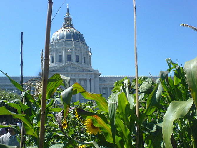 Victory Garden in Civic Center Plaza taken dur...