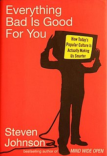 <i>Everything Bad Is Good for You</i> book by Steven Johnson