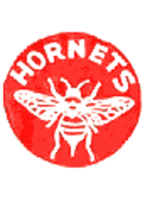 Pittsburgh Hornets - Image: Pittsburgh Hornets 60s