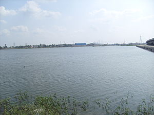 Porur Lake - Image: Porur Lake 1