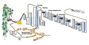 Kraft process - Continuous kraft pulp mill