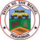 Official seal of San Manuel