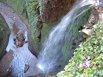 Shanklin Chine - Shanklin Chine's largest waterfall, near the upper pay gate.