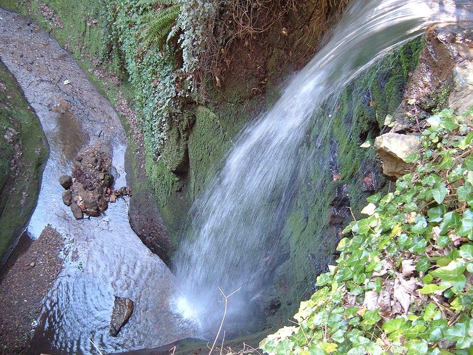 Shanklin Chine Waterfall