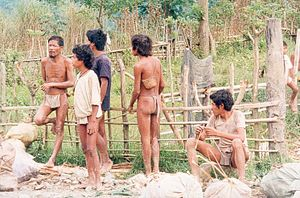 Ethnobiology - Some Mangyan (who count the Hanunóo among their members) men, on Mindoro island, Philippines, where Harold Conklin did his ethnobiological work