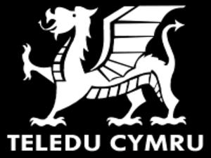 Wales West and North Television - Image: Teledu cymru redvers