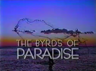 The Byrds of Paradise - Image: The Byrds of Paradise