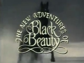 <i>The New Adventures of Black Beauty</i> television series