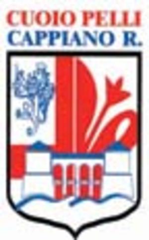 Cuoiovaldarno R.F.C. - Image: Cuoiopelli Cappiano Romaiano logo