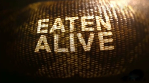 Eaten Alive (TV special) - The title card of the special