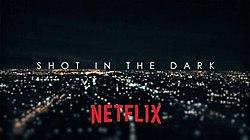 Shot in the Dark (TV series) - Wikipedia