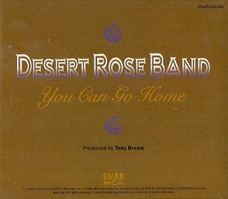 You Can Go Home 1991 single by The Desert Rose Band