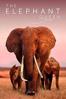 <i>The Elephant Queen</i> 2019 documentary film