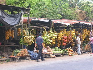 Fruit Market on roadside