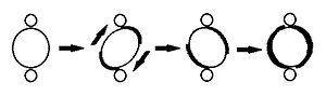 Illustration of kinetoplast rotating during minicircle replication.