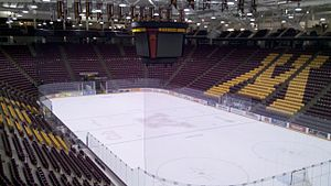 3M Arena at Mariucci