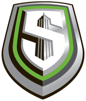 Hartford Colonials - New York Sentinels logo
