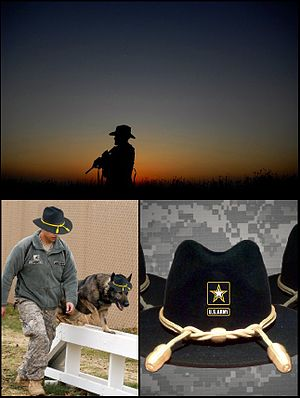 Cavalry Stetson - Three of the five photographs accompanying the announcement on www.army.mil