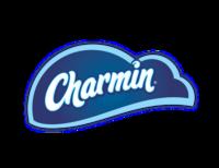 Charmin Toilet Paper Sale Kitchener