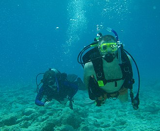 Recreational diving - Divers off Key West, Florida