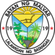 Official seal of Malvar