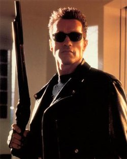 The Top Ten Arnold Schwarzenegger  Movies