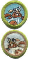 Whitewater merit badge, type I.png