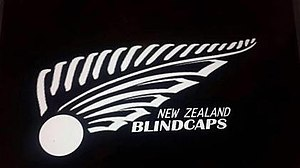 New Zealand national blind cricket team - Image: Blind Caps Logo