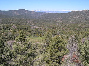 Pine Nut Mountains - Pine Nut Mnts with snow-capped Carson Range