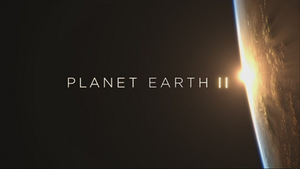 Planet Earth II - Series title card from the BBC broadcast