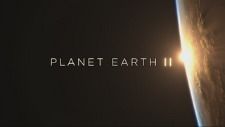<i>Planet Earth II</i> 2016 British nature documentary series