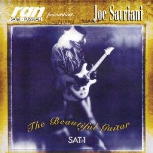 The Beautiful Guitar - Image: The Beautiful Guitar (Joe Satriani album cover art)