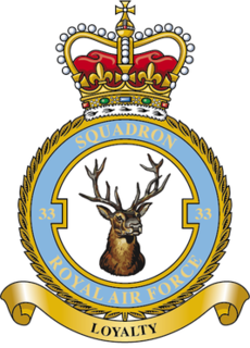 No. 33 Squadron RAF Flying squadron of the Royal Air Force