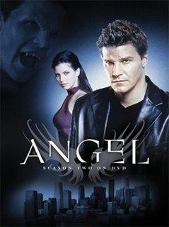 <i>Angel</i> (season 2) season of television series