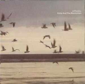 A Promise (song) - Image: Bunnymen apromise