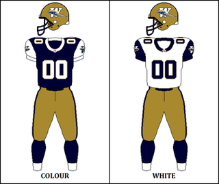 2001 Winnipeg Blue Bombers season