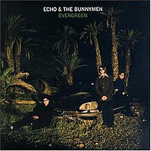 An album cover showing a car in a group of palm trees at night. Three men are leaning against the car: one sat down at the front-left corner of the car, on stood at the front-right of the car, and one stood at the right of the car. The band's name in white text is at the top of the cover, with the album's name just below also in white text.