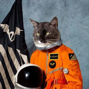Surfing the Void - Image: Klaxons surfing the void