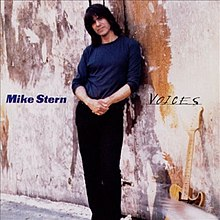 Mike Stern Voices cover